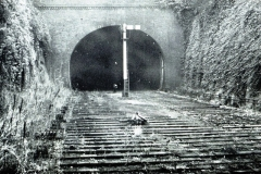 Tunnel-with-Signal